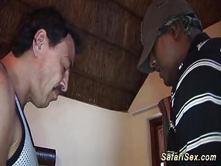 Afrikanischen Safari Sex Orgie in der Natur
